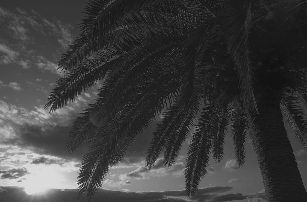 白光の空.jpg