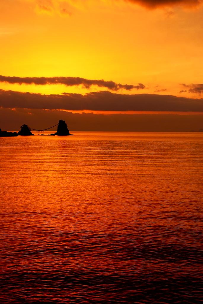 陽海.jpg