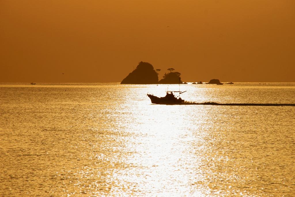黄金の海へ・・.jpg