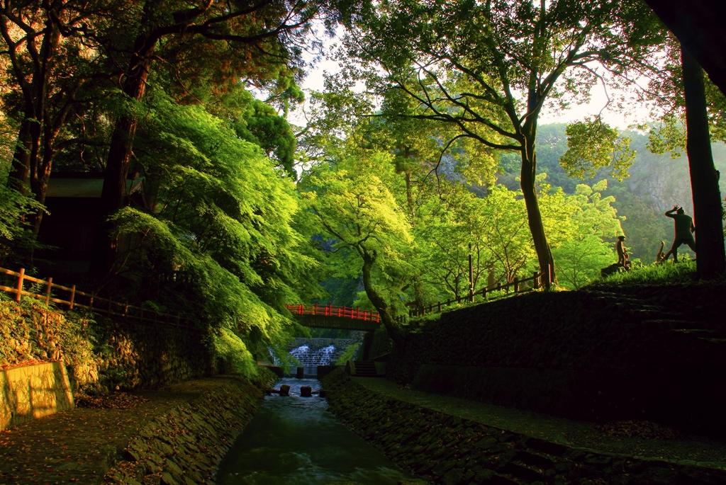暁嵐公園『新緑』.jpg