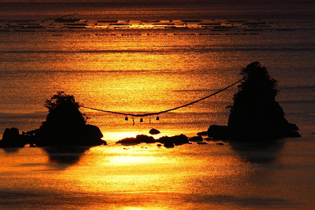 金色の海.jpg