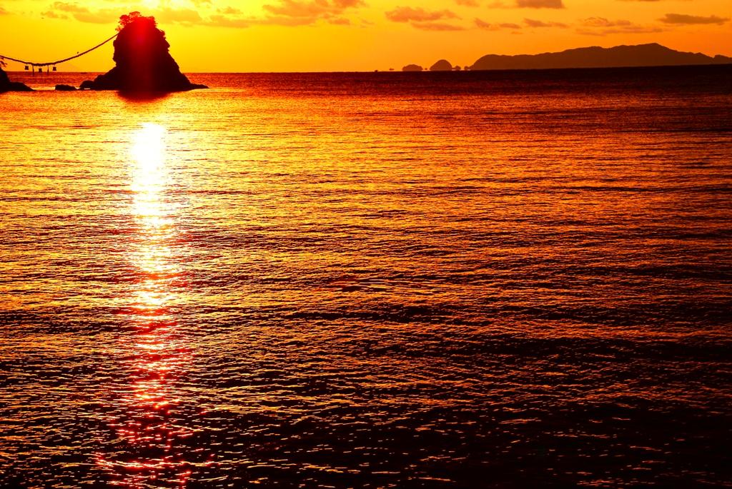 黄金の海.jpg